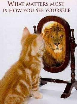 Lack of self confidence - Notoriete acquisitive definition ...