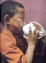 Young monk blowing the conch-shell